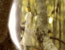 Stephen Warwick & the Secondhand Stories 'Marlena' Music Video