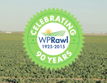 WP Rawl | 90th Anniversary